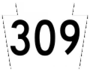 route309